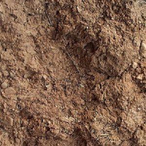 Mud Texture 12