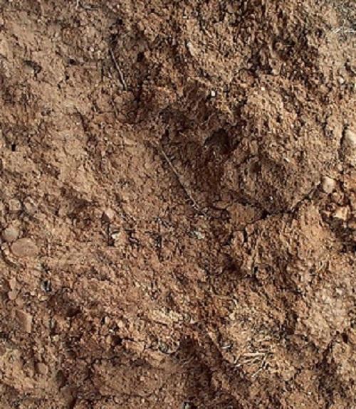 mud-texture-12