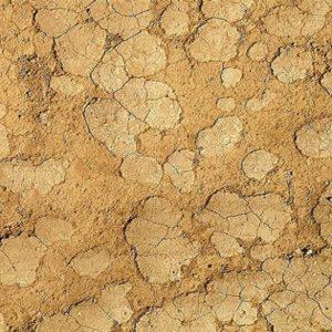 Mud Texture 7