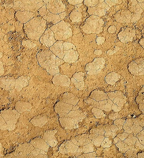 mud-texture-7