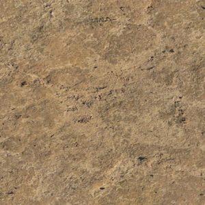 Mud Texture 1